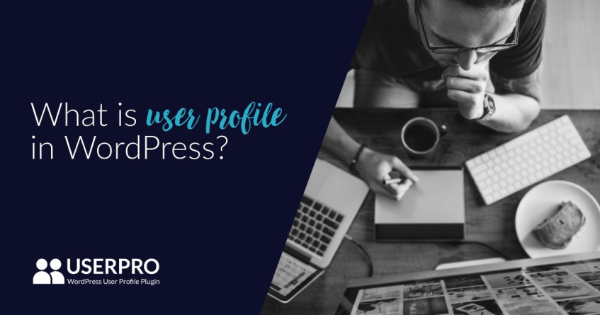 user profile in WordPress